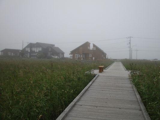 一日目、霧にけむる湿原の木道 左の建物がペンション・ポーチ この木道も7年おきくらいには交換作業が必要だそうです