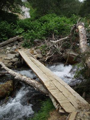 この沢筋もちょっと荒れていて倒木も多く、新しい(緊急?)の橋が架けられていました
