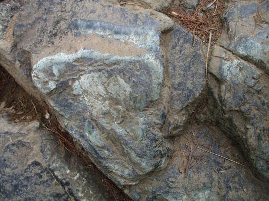 しかし本来のかんらん岩は「ペリドット」という美しい緑色の宝石を含んでいて、学名の「オリビン」はこのオリーブ色からつけられたそうです いたる所、登山靴で磨かれたかんらん岩はうっとりするようなオリーブ色とブルーの流紋模様を見せていました