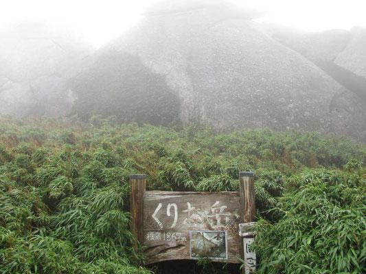 どこをどう登っているのか分からぬままに到着したピーク 栗生岳