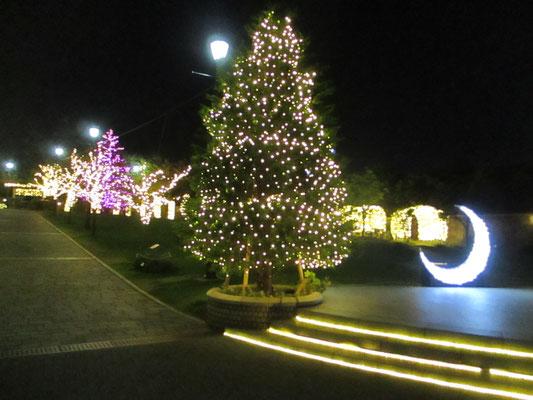 港の見える丘公園や外人墓地をつなぐアメリカ山公園 クリスマスシーズン