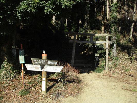 琴平神社の登山口から登ります この後は驚くような急登の階段も登場