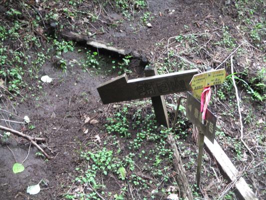 この間一時間半 ホッとした登山口、林道出合 ここで初めて「朝日山」の標識を見る