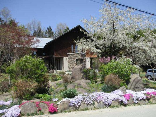 翌日に立ち寄った日野春アルプ美術館 ここも花が満開でした
