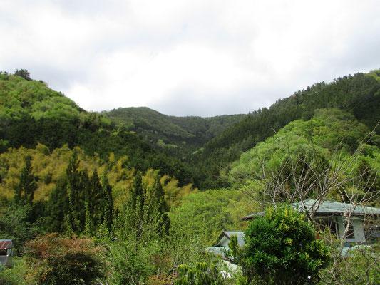 帰路の車道から、今日歩いた稜線が見えます