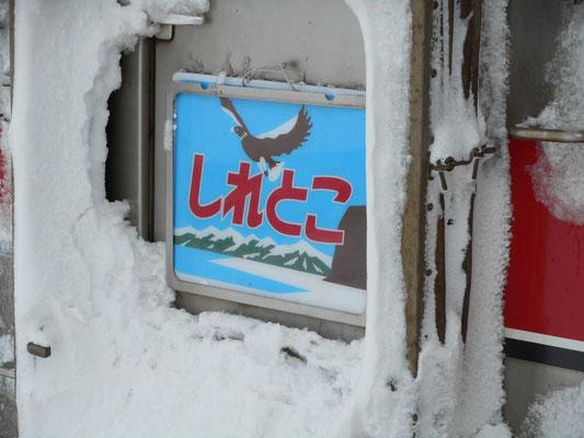 雪にまみれたヘッドマーク