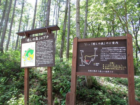 ブナの森の散策ができる「癒しの森」入り口 ここも「クマに注意」