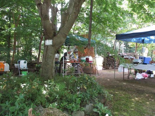 木陰のテントで冷たいお抹茶を点ておもてなししました