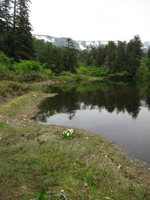 ここでしばらく休憩&スケッチタイム ゆっくりお茶を飲んだり、山のなかの時間を味わい至福のひととき