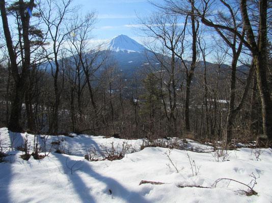 いつも横浜から見る富士山と形が違う