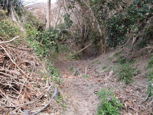 すぐに土砂で埋まった登山道になるが堆積物が取り除かれちゃんと歩けるようになっている