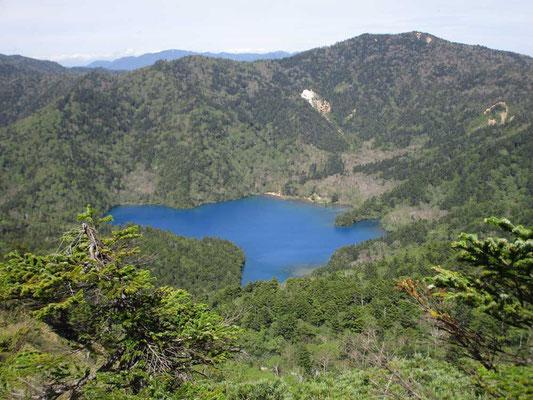 志賀山山頂奥からのぞいた真っ青な大沼池