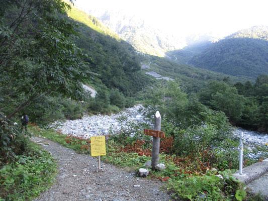 いよいよ林道を離れ、本格的な登山道に〜