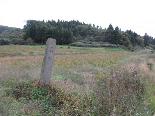 下山後、地図で見つけた「辰ヶ湯温泉」に投宿 この石碑を見つけて歴史ある温泉であると知りました 一軒宿の「辰ヶ湯旅館」は200年ほど前に開湯、主に農民が湯治で利用していたそうです