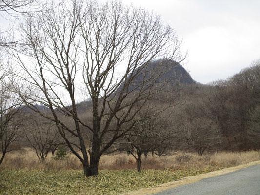 出発のときはまだ相馬山の姿が見えました