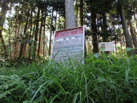 「西山を守る会」事務局の荻田さん曰く、この地形は昔、おそらく畑だったのでは?と そのため林道を作れば植林の搬出も楽に出来る場所です