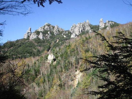 分岐を沢沿いの道に取り進みますが、ずっと瑞牆山の奇峰が樹林越しに見え隠れします
