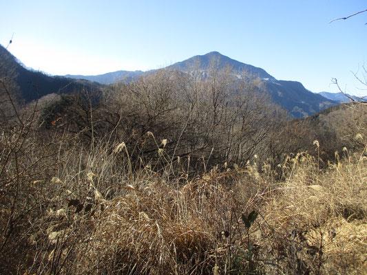 美しい姿の武甲山