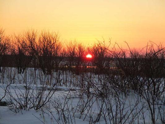 沈みゆく根室半島の夕陽