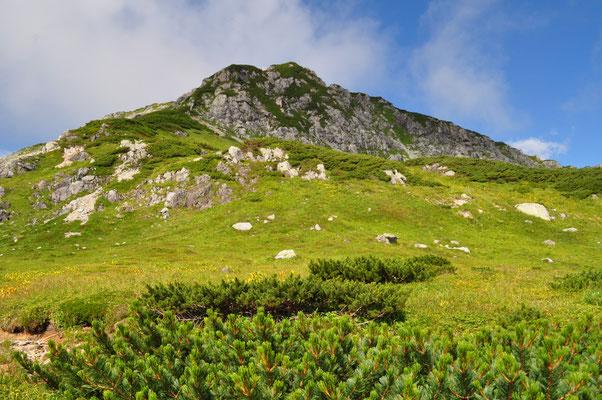 先程の花崗閃緑岩とハイマツのコンビが美しくカッコいい三俣蓮華岳