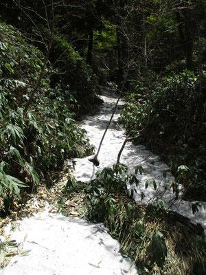 途中の谷にはまだ残雪がかなりありました