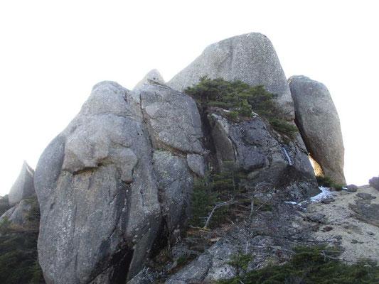 リーダーの後ろについて藪漕ぎでトッコ岩まで足を伸ばしました