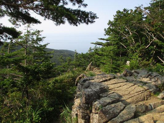 樹林帯を抜ける頃、かんらん岩の露呈部が顕著になります