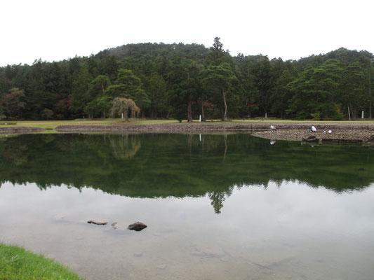 池中央(写真では右側)の島で、作業をしている人が二人 どうやってそこまで行ったのだろう?