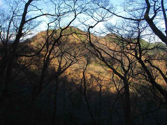 早朝の日を浴びる西山
