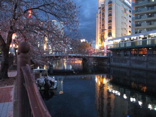 桜もまだ咲き残っていました