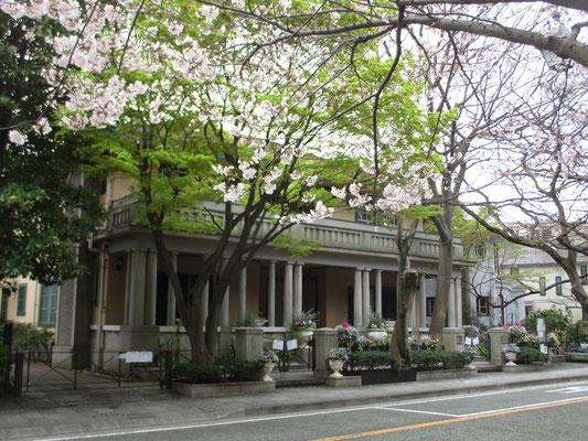 山手234番館 桜と新緑とを前景に