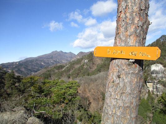 稜線を辿ると山頂標識 向こうは茅ヶ岳方面