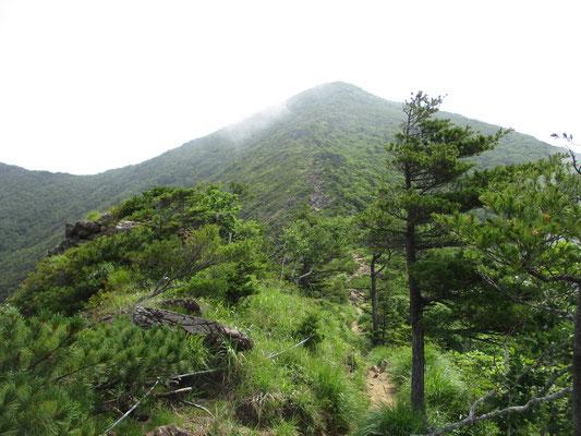 馬の背から見上げる堂々としたアポイ岳 とても800mそこそこの山とは思えません