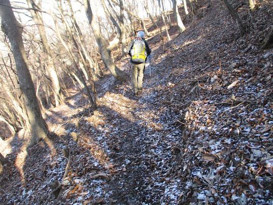 ミズメの木から下山に向かうと、北側の日陰には昨日の雨が雪だった、その名残りが少しありました