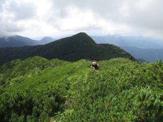 ハイマツの中の急登が続き、そのうち岩稜帯をグイグイと最後の登りになります