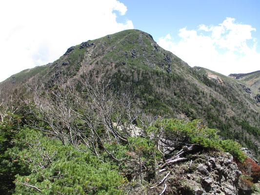 これから登る西天狗岳も見えてきました