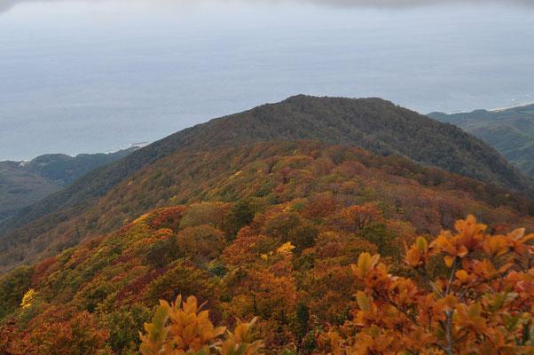紅葉の山稜が日本海に向かっている