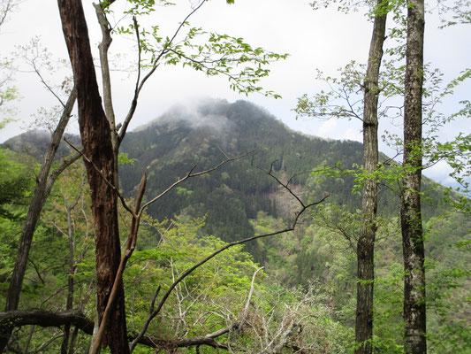 稜線を進むと、向こうに倉岳山の姿が見えてきました
