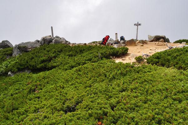 山頂自体はハイマツに覆われいる部分も多い