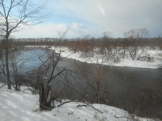 釧路湿原を流れる釧路川