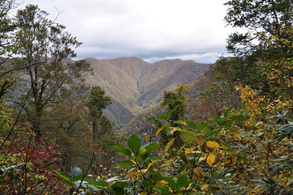登りの途中、樹林の切れ目から秋色の山稜が見下ろせる かなり登って来たことが分かる