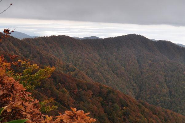 稜線に近づいてくると木々が小さくなり、展望がきくようになる 日本海が銀色に輝く