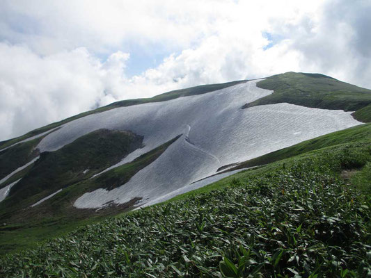 巨大な雪田 ヘンリー・ムーアの曲線!