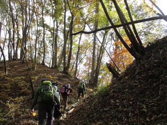 笹尾根の秋3 静かに、楽しく歩を進める