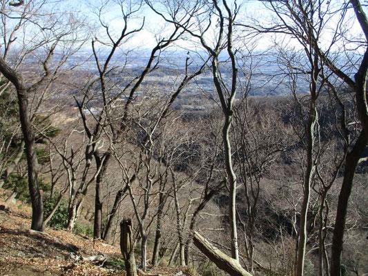 少し登ると冬ならではの木立越しの眺望が美しく広がってきます
