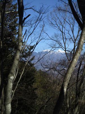 登っていく途中に木の間に八ヶ岳が見えてきます