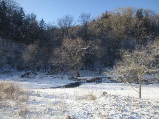 釧路を出発すると、さすがに冷え込む朝に氷結した木々の霧氷がキラキラと輝き美しい