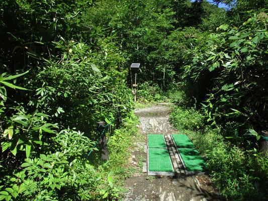 そして尾瀬に入るときには、登山靴に付いている「下界」の植物種の移入を防ぐ為に緑の足ふきマットを利用し入山します