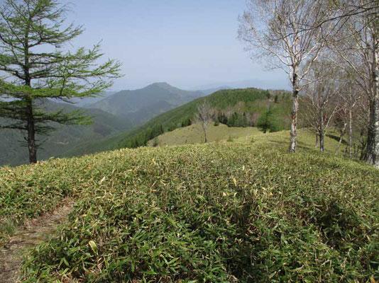 気分爽快のパノラマ ここを北笹山と仮に名付けています