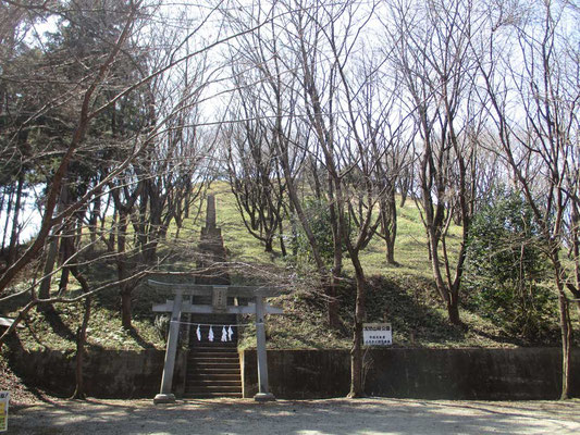 浅間山桜公園 上に浅間神社があります